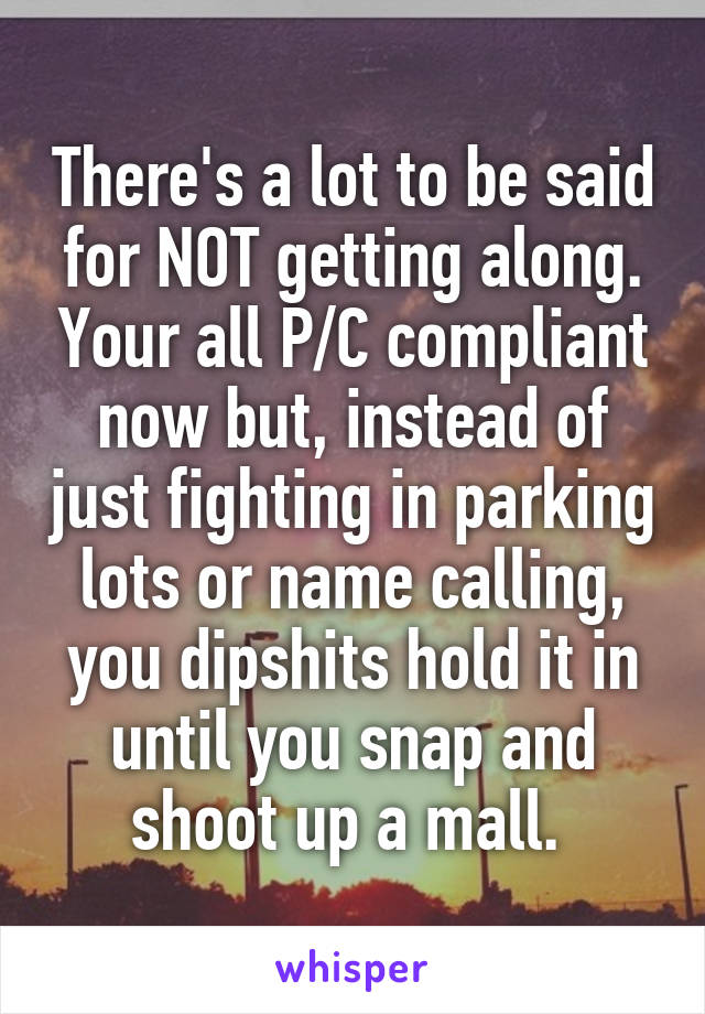 There's a lot to be said for NOT getting along. Your all P/C compliant now but, instead of just fighting in parking lots or name calling, you dipshits hold it in until you snap and shoot up a mall.