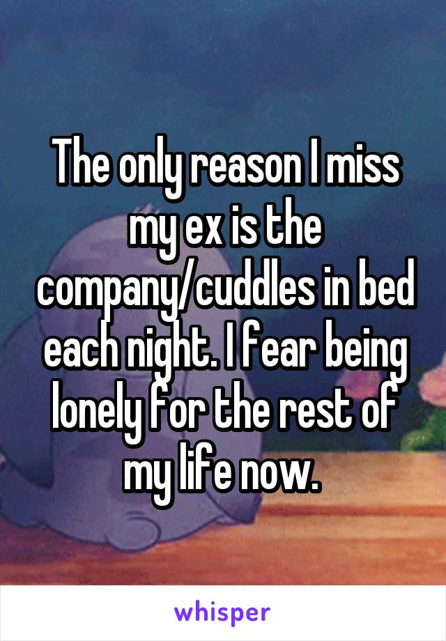 The only reason I miss my ex is the company/cuddles in bed each night. I fear being lonely for the rest of my life now.
