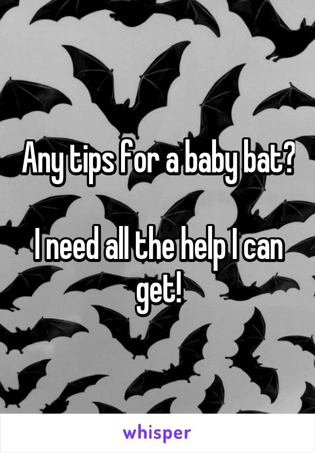 Any tips for a baby bat?  I need all the help I can get!