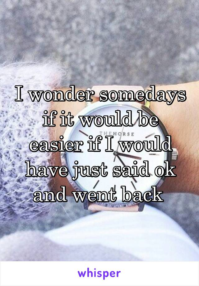 I wonder somedays if it would be easier if I would have just said ok and went back
