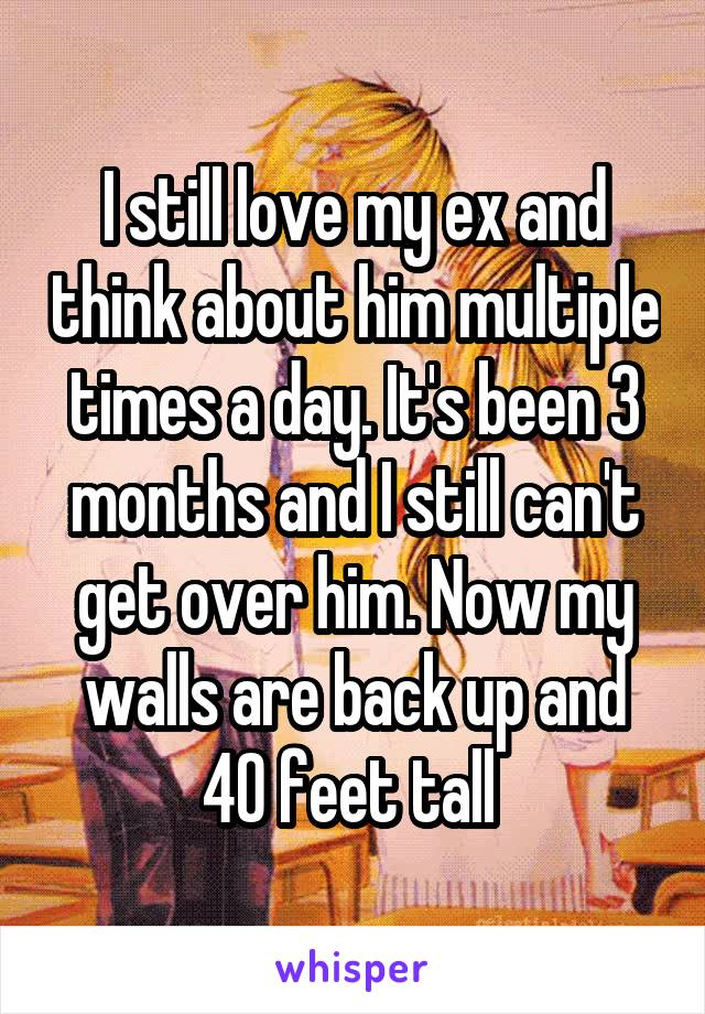 I still love my ex and think about him multiple times a day. It's been 3 months and I still can't get over him. Now my walls are back up and 40 feet tall
