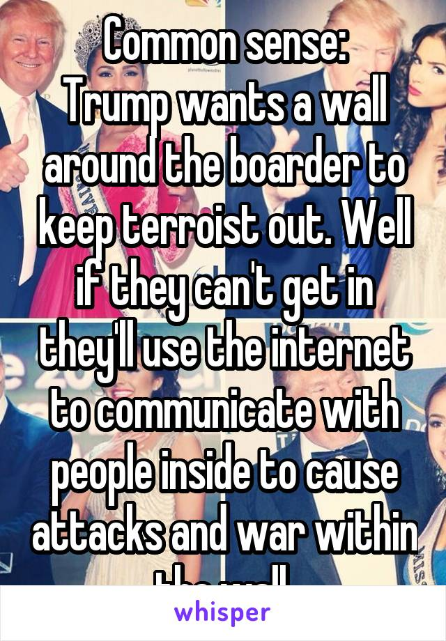 Common sense: Trump wants a wall around the boarder to keep terroist out. Well if they can't get in they'll use the internet to communicate with people inside to cause attacks and war within the wall.