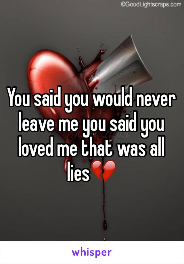 You said you would never leave me you said you loved me that was all lies💔