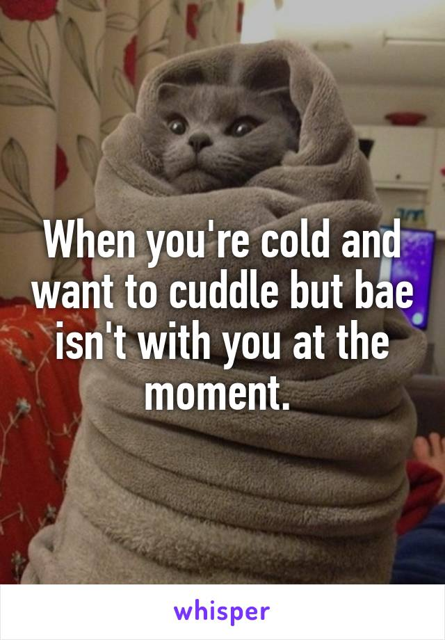When you're cold and want to cuddle but bae isn't with you at the moment.