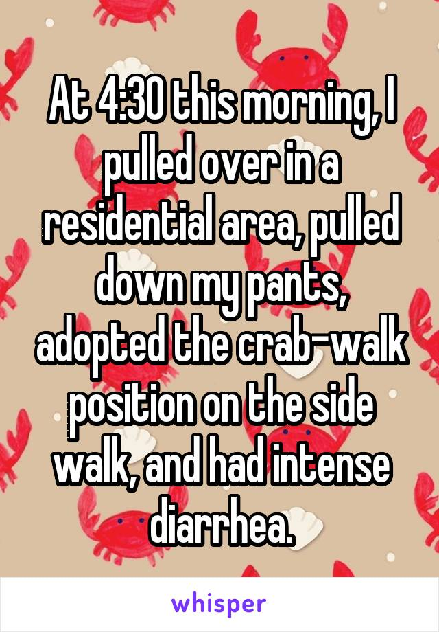 At 4:30 this morning, I pulled over in a residential area, pulled down my pants, adopted the crab-walk position on the side walk, and had intense diarrhea.