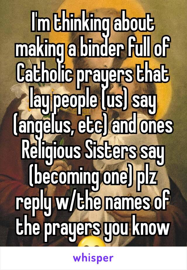 I'm thinking about making a binder full of Catholic prayers that lay people (us) say (angelus, etc) and ones Religious Sisters say (becoming one) plz reply w/the names of the prayers you know  😁