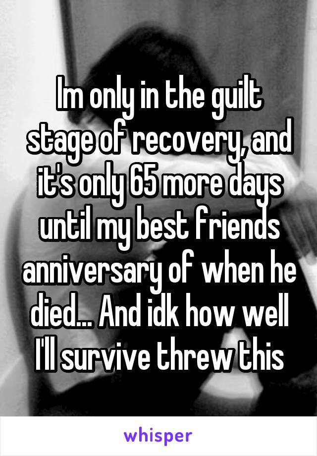 Im only in the guilt stage of recovery, and it's only 65 more days until my best friends anniversary of when he died... And idk how well I'll survive threw this