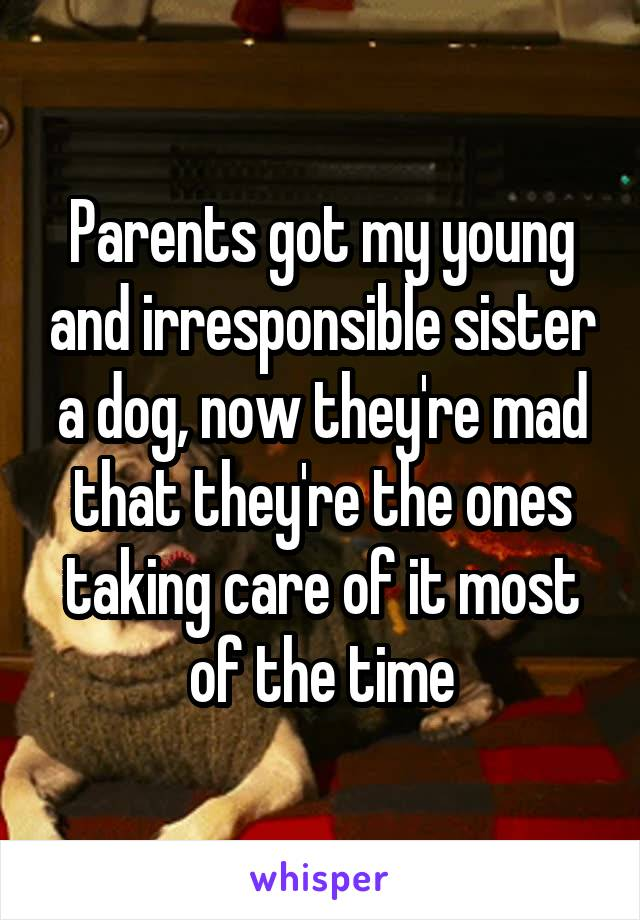 Parents got my young and irresponsible sister a dog, now they're mad that they're the ones taking care of it most of the time