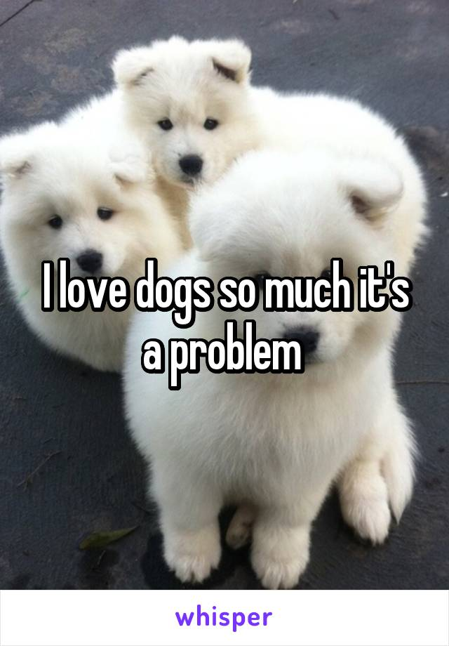 I love dogs so much it's a problem