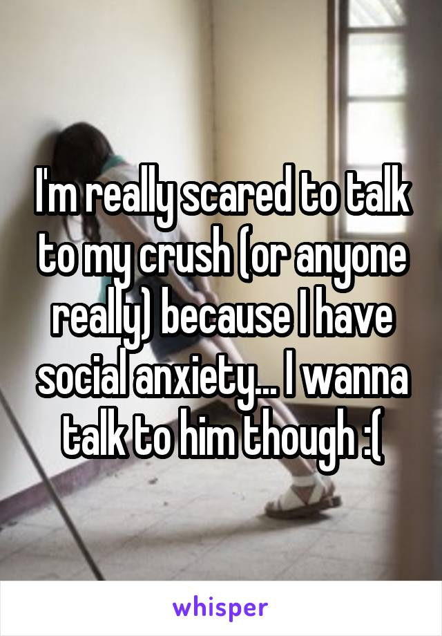 I'm really scared to talk to my crush (or anyone really) because I have social anxiety... I wanna talk to him though :(