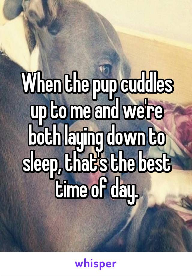 When the pup cuddles up to me and we're both laying down to sleep, that's the best time of day.