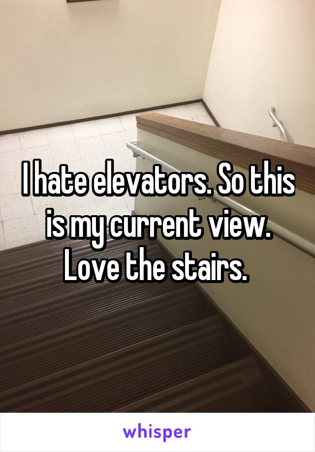 I hate elevators. So this is my current view. Love the stairs.