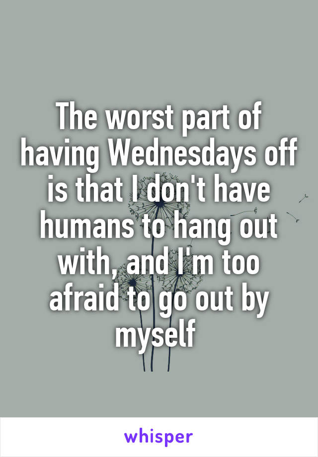 The worst part of having Wednesdays off is that I don't have humans to hang out with, and I'm too afraid to go out by myself