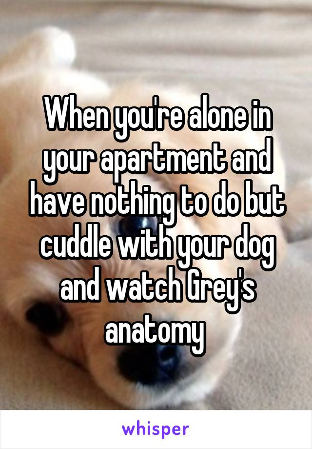 When you're alone in your apartment and have nothing to do but cuddle with your dog and watch Grey's anatomy