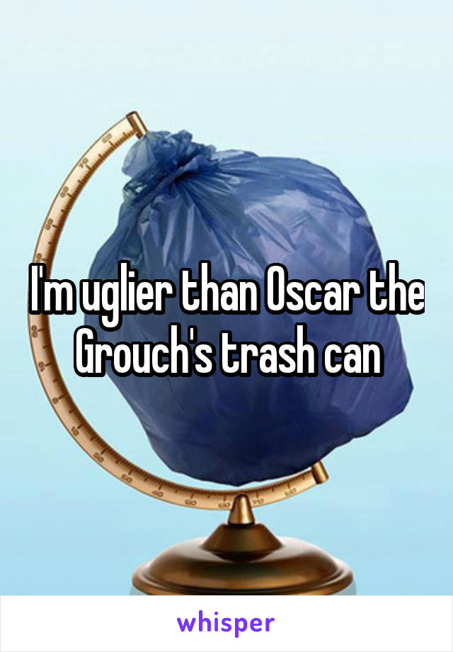 I'm uglier than Oscar the Grouch's trash can
