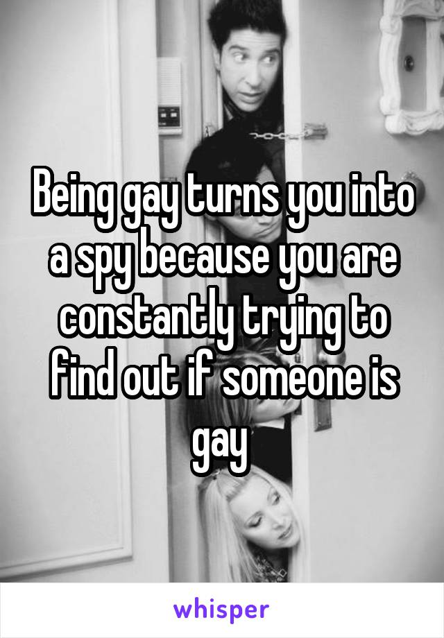 Being gay turns you into a spy because you are constantly trying to find out if someone is gay