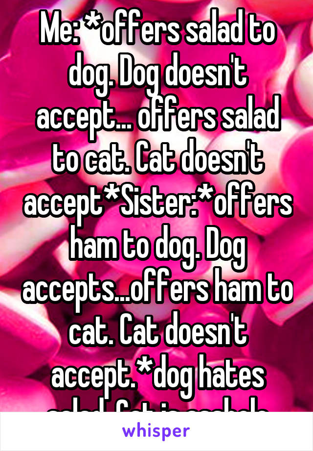 Me: *offers salad to dog. Dog doesn't accept... offers salad to cat. Cat doesn't accept*Sister:*offers ham to dog. Dog accepts...offers ham to cat. Cat doesn't accept.*dog hates salad. Cat is asshole