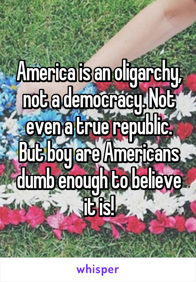 America is an oligarchy, not a democracy. Not even a true republic. But boy are Americans dumb enough to believe it is!