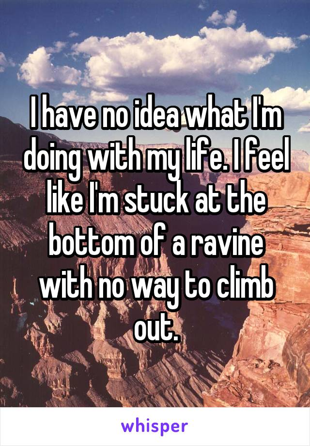 I have no idea what I'm doing with my life. I feel like I'm stuck at the bottom of a ravine with no way to climb out.