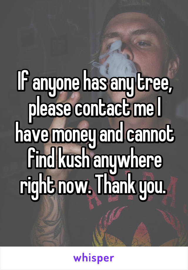 If anyone has any tree, please contact me I have money and cannot find kush anywhere right now. Thank you.