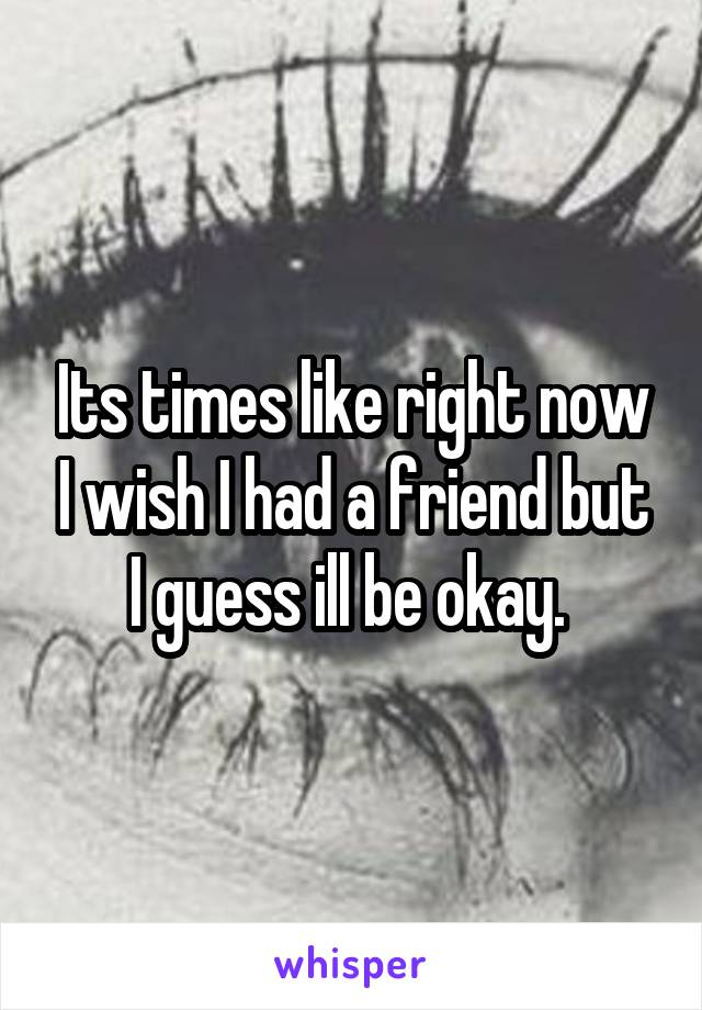 Its times like right now I wish I had a friend but I guess ill be okay.