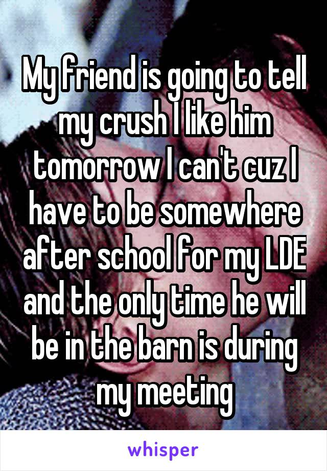 My friend is going to tell my crush I like him tomorrow I can't cuz I have to be somewhere after school for my LDE and the only time he will be in the barn is during my meeting