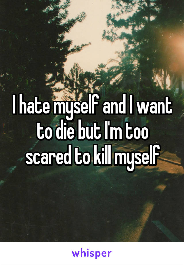 I hate myself and I want to die but I'm too scared to kill myself