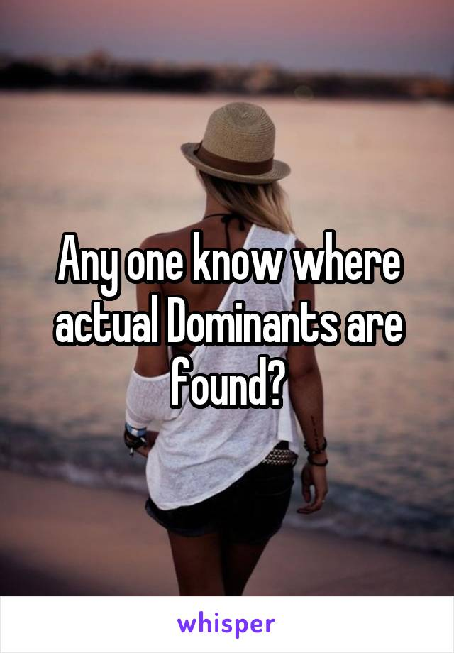 Any one know where actual Dominants are found?