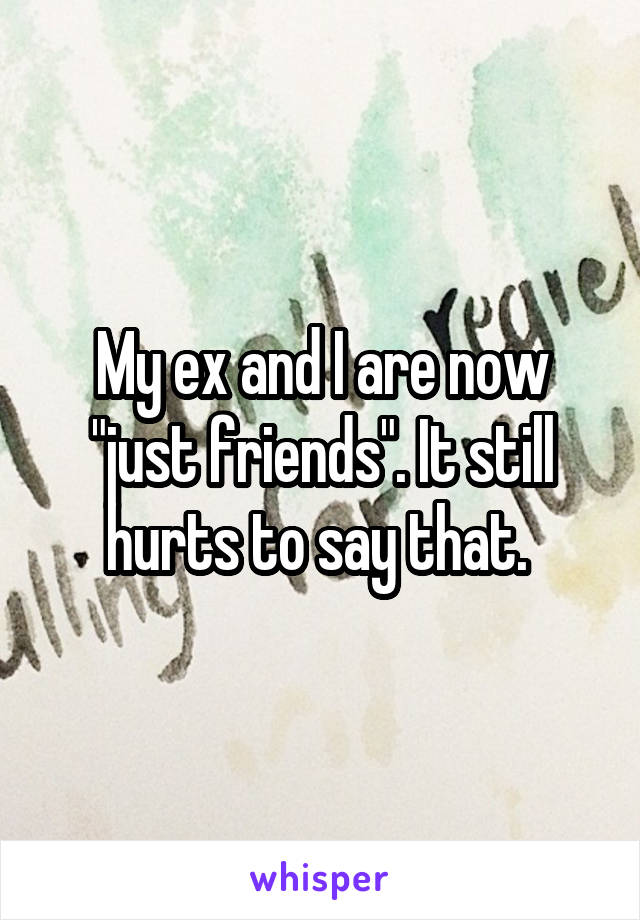 "My ex and I are now ""just friends"". It still hurts to say that."