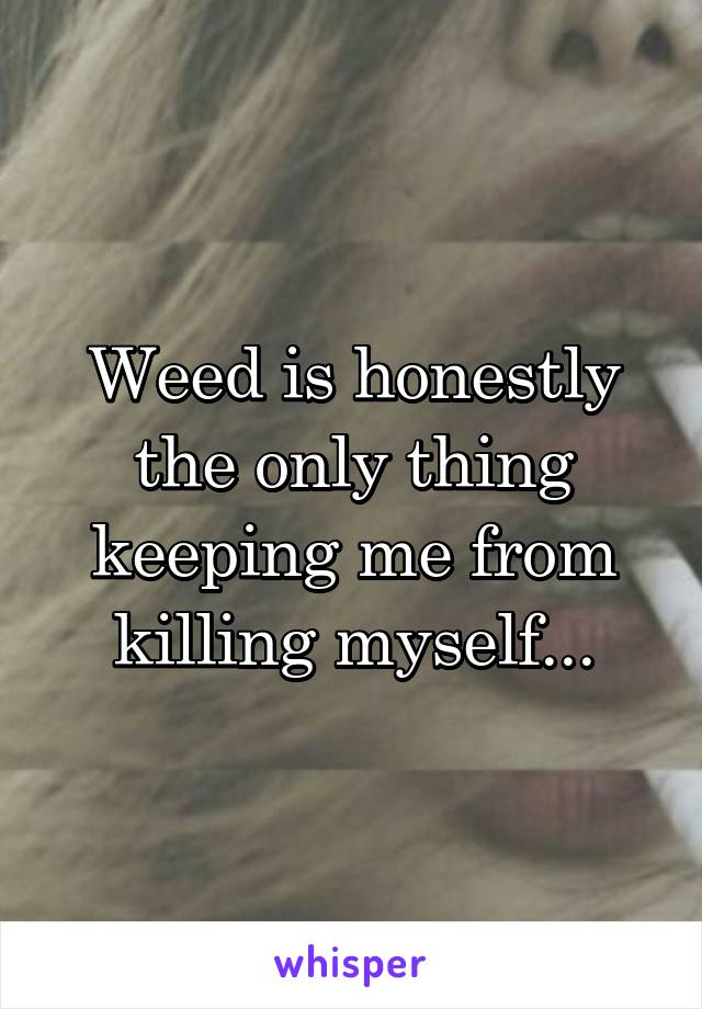 Weed is honestly the only thing keeping me from killing myself...