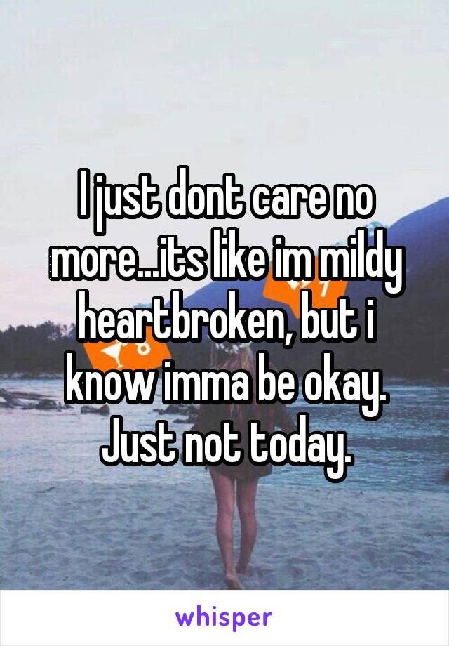 I just dont care no more...its like im mildy heartbroken, but i know imma be okay. Just not today.