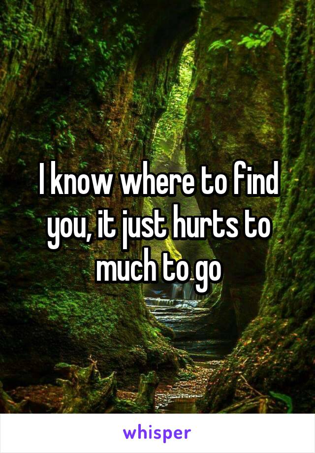 I know where to find you, it just hurts to much to go