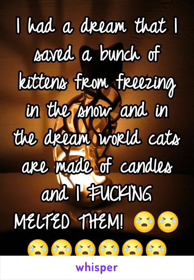 I had a dream that I saved a bunch of kittens from freezing in the snow and in the dream world cats are made of candles and I FUCKING MELTED THEM! 😭😭😭😭😭😭😭😭