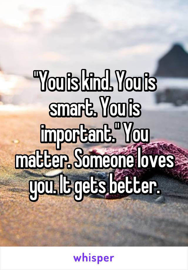 """You is kind. You is smart. You is important."" You matter. Someone loves you. It gets better."