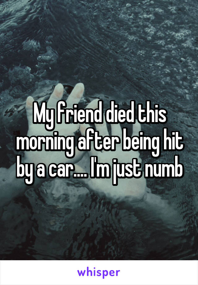 My friend died this morning after being hit by a car.... I'm just numb