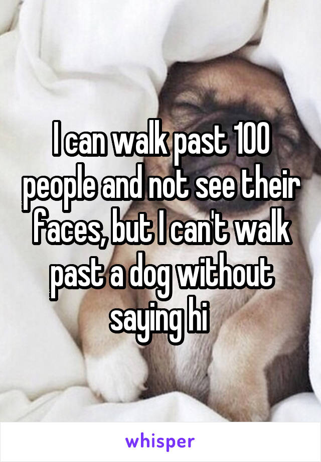 I can walk past 100 people and not see their faces, but I can't walk past a dog without saying hi
