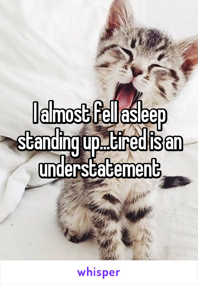 I almost fell asleep standing up...tired is an understatement