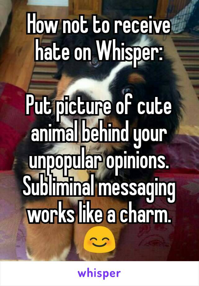 How not to receive hate on Whisper:  Put picture of cute animal behind your unpopular opinions. Subliminal messaging works like a charm. 😊