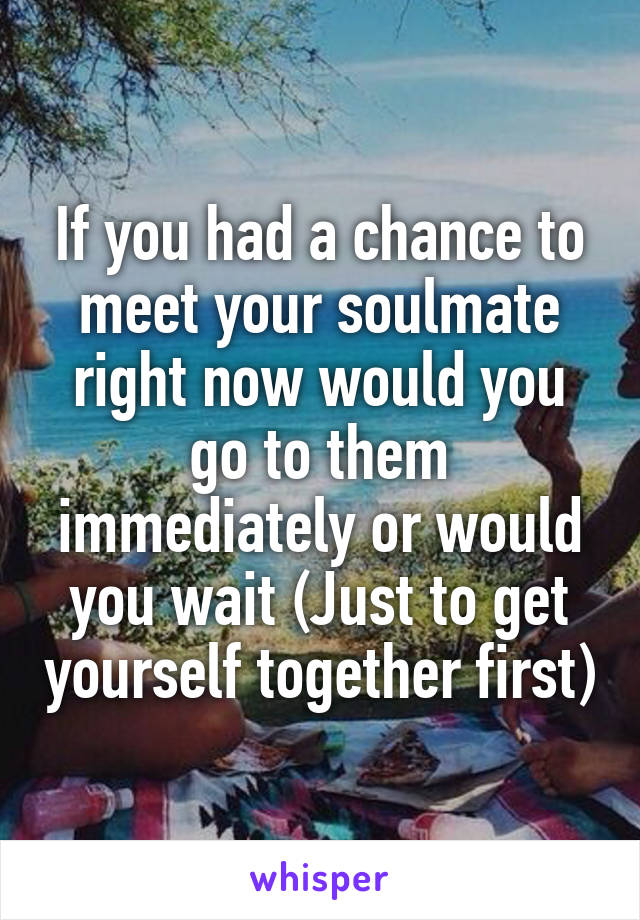 If you had a chance to meet your soulmate right now would you go to them immediately or would you wait (Just to get yourself together first)