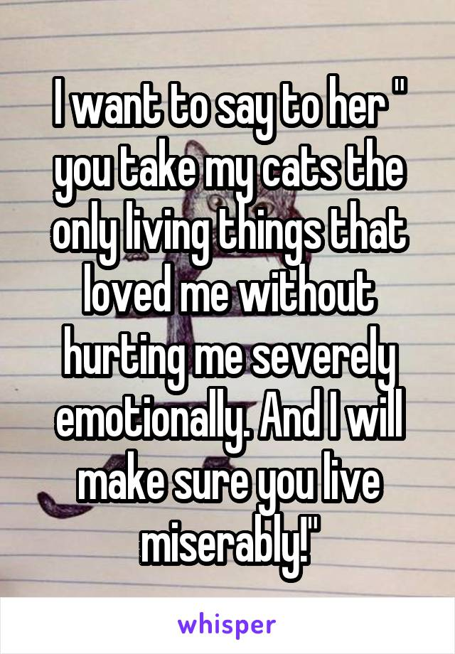 "I want to say to her "" you take my cats the only living things that loved me without hurting me severely emotionally. And I will make sure you live miserably!"""
