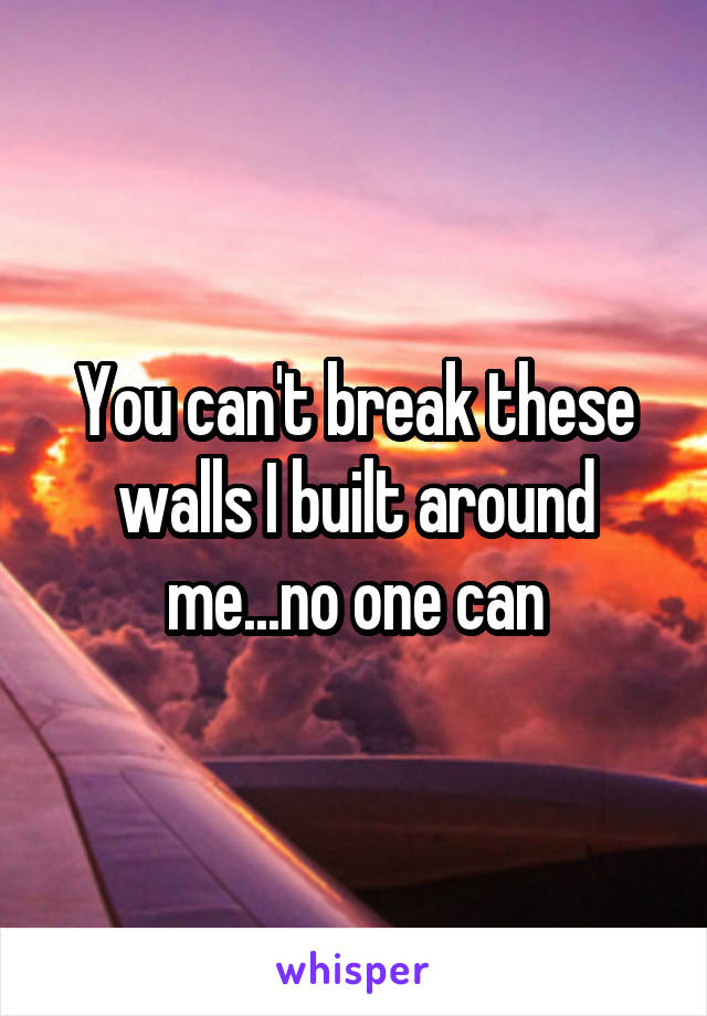 You can't break these walls I built around me...no one can