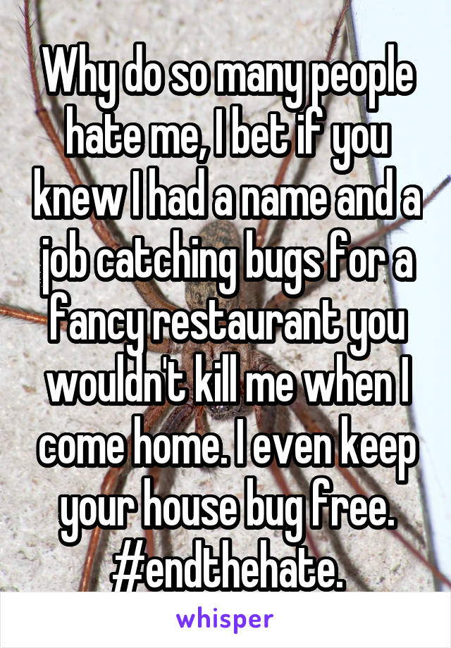 Why do so many people hate me, I bet if you knew I had a name and a job catching bugs for a fancy restaurant you wouldn't kill me when I come home. I even keep your house bug free. #endthehate.
