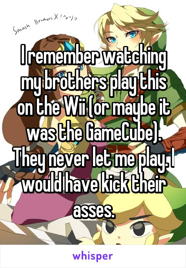 I remember watching my brothers play this on the Wii (or maybe it was the GameCube). They never let me play. I would have kick their asses.