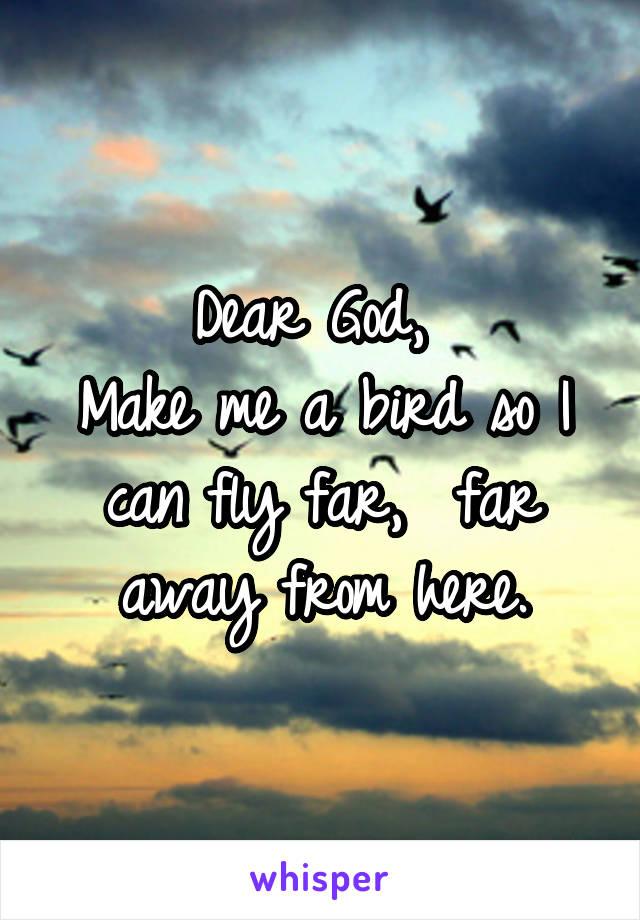 Dear God,  Make me a bird so I can fly far,  far away from here.