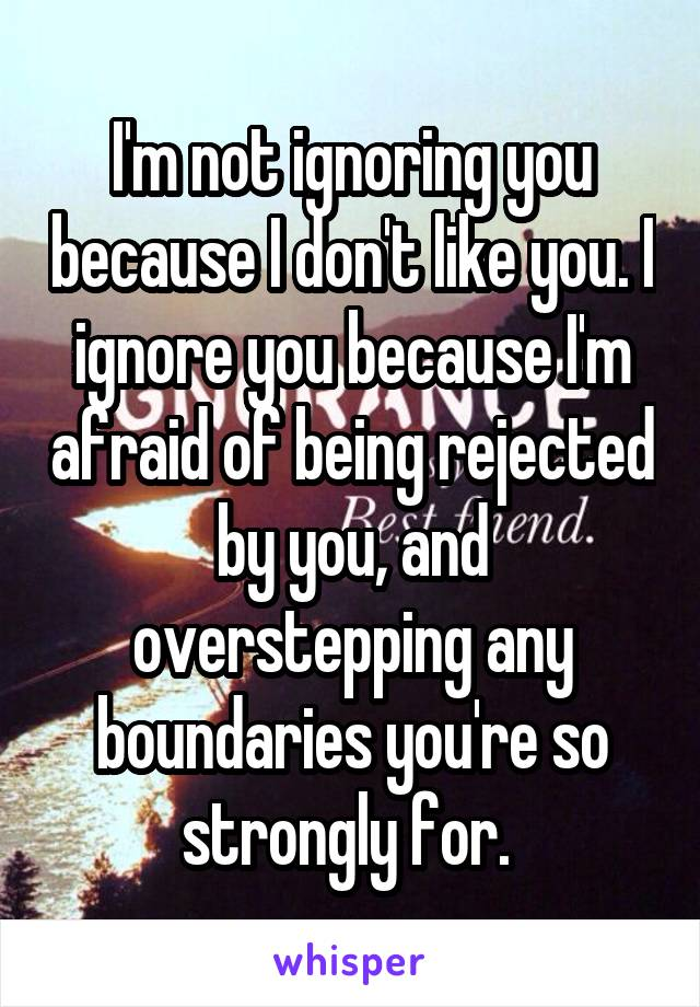 I'm not ignoring you because I don't like you. I ignore you because I'm afraid of being rejected by you, and overstepping any boundaries you're so strongly for.