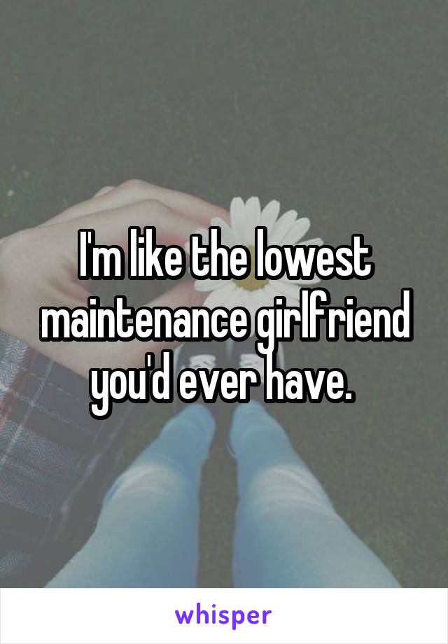 I'm like the lowest maintenance girlfriend you'd ever have.