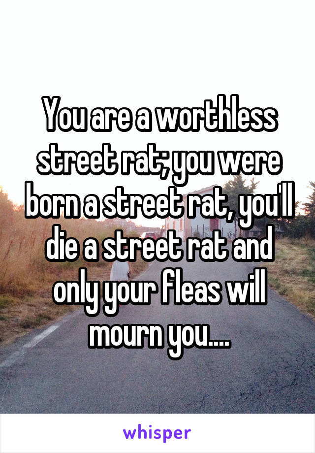 You are a worthless street rat; you were born a street rat, you'll die a street rat and only your fleas will mourn you....