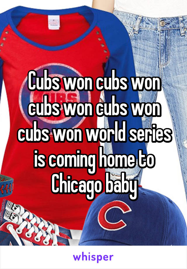 Cubs won cubs won cubs won cubs won cubs won world series is coming home to Chicago baby