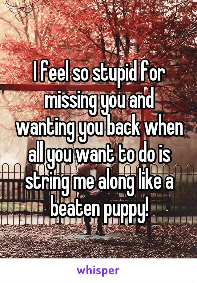 I feel so stupid for missing you and wanting you back when all you want to do is string me along like a beaten puppy!