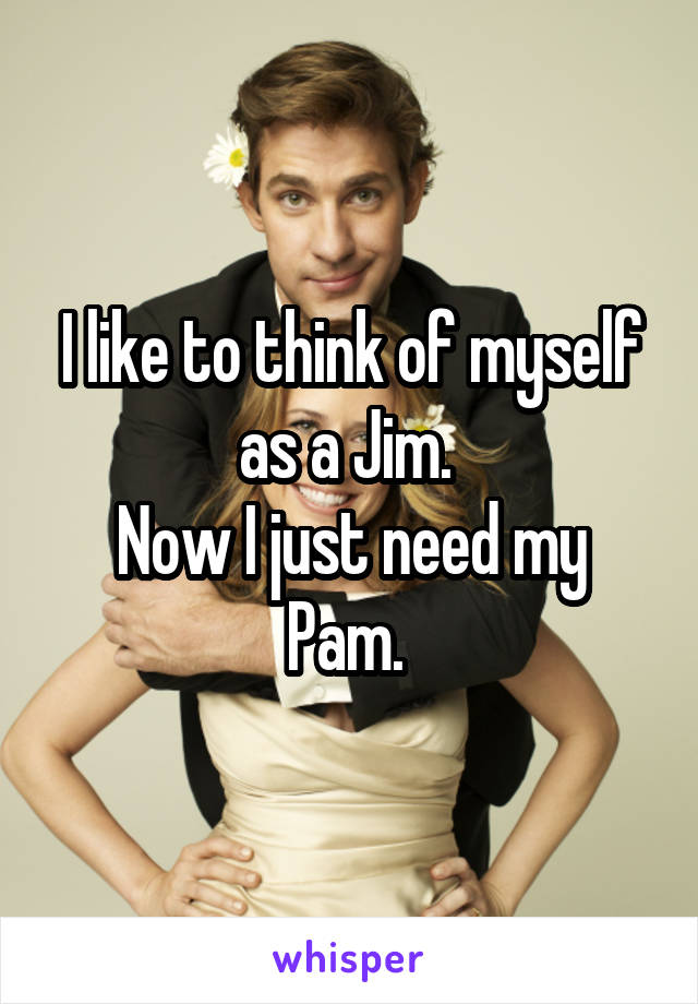 I like to think of myself as a Jim.  Now I just need my Pam.